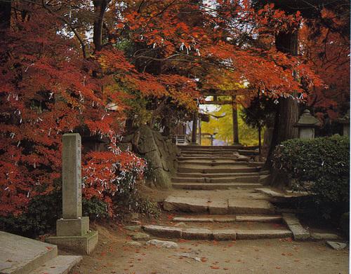 宝珠山 立石寺 山寺(秋の参道)