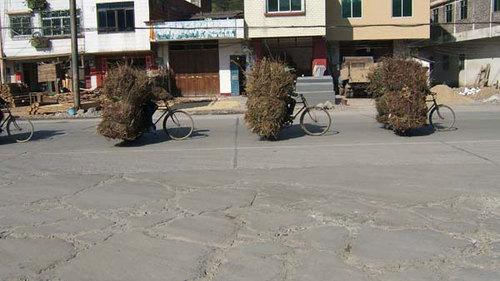 薪を運ぶ女達(まるで自転車のおばけ)